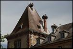 En couple, en couple, moi je suis seul !    Munster, Alsace, Haut-Rhin, France - juin 2011