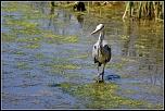 [17 mars 2004]Ouverture du forum sur le Canon 300D-2011-06-032.jpg