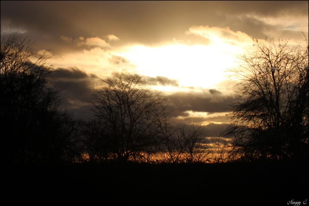 -la-terre-et-le-ciel_0648.jpg