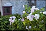 cartes memoires en vacance-urtubie_24-07-2012-16-59-09_0020.jpg