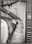 IMG 7424 Snapseed