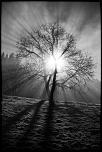 UN AUTRE LIEN PHOTOSHOP TRES INTERESSANT-3f1a0131_1024.jpg