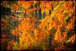 UN AUTRE LIEN PHOTOSHOP TRES INTERESSANT-img_2742_1024.jpg
