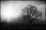 UN AUTRE LIEN PHOTOSHOP TRES INTERESSANT-5d3_1349_1024.jpg