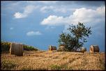 Qui a déjà acheté chez Digit-Photo.com-30-les-botte-pailles-1-8655.jpg