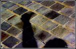 Stockage-mvd60-1-7-.jpg