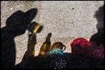 Qui a déjà acheté chez Digit-Photo.com-39-ombre-chinoise.jpg