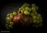 Avez-vous de questions sur le 300d-raisin-citrouille.jpg