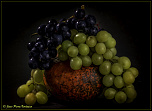 Fruits aux couleurs d'automne