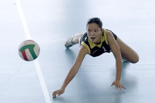 volley ball nationale 2 f minine dardilly muret. Black Bedroom Furniture Sets. Home Design Ideas