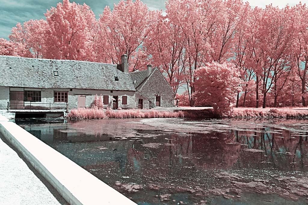 photographie infrarouge numérique